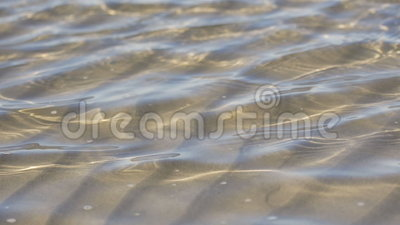 Water Ripples. A beautiful aesthetic closeup shot of ripples on ocean water. You can see the beautiful sand bottom through the water. 4x slower than real life stock footage