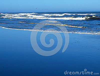Ocean Waves Breaking on Shore