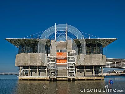 Oceanarium II