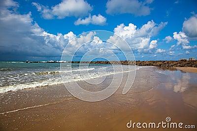Oceanic coast