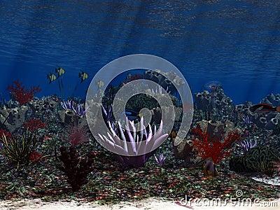 Oceanworld 3