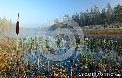 October s frosty lake