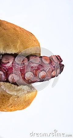 Octopus Sandwich.