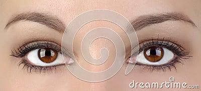 Oczy dwa