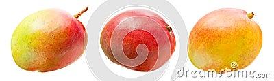 Odosobneni mango