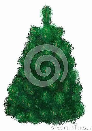 Odosobniony jodły drzewo