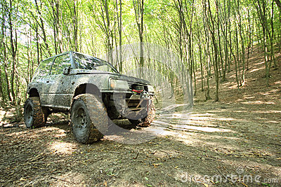 Off-road big-wheeled monster truck in mud forest