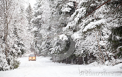 Off-road riding on winter forest road