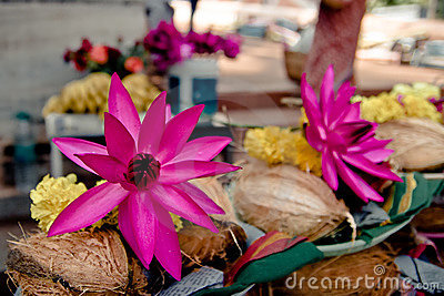 Offerings: pink lotus, yellow flowers