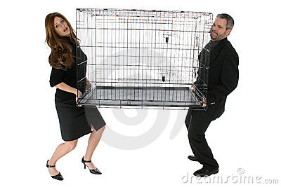 Office Cage
