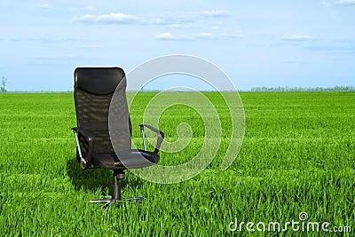 Office chair in a green grass