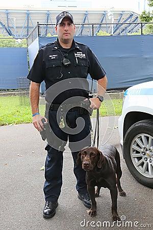 Oficial de polic a de la oficina k 9 del tr nsito de ypd y labrador k 9 ellis que proporciona - Oficina policia nacional ...