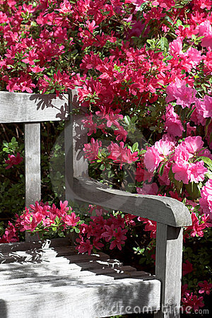Ogród kwiatów na stanowisku badawczym