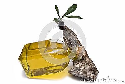 Oil bottle lying on a branch.