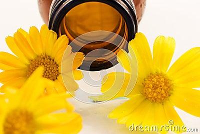 Oil from calendula flower
