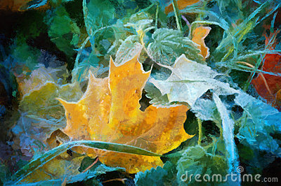 Oil maple leaves