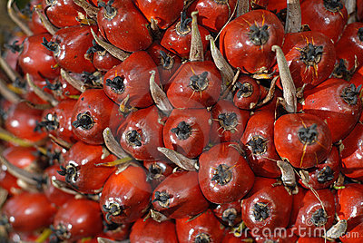 Oil Palm fruit close up