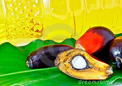 Oil palm fruit and palm olein oil