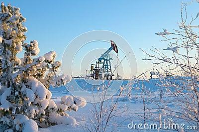 The oil pump.