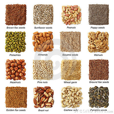 Free Oil Seeds And Nuts Stock Image - 18299711