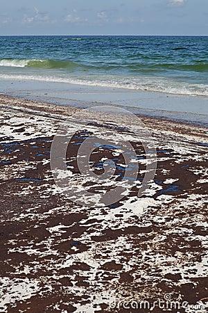 Oil Spill on the Beach June 2010