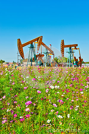 Oil sucking machine and flowers