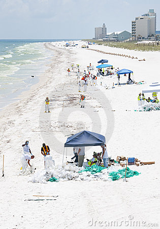 Oil washes ashore in Pensacola Beach Editorial Stock Photo