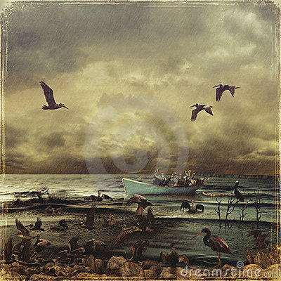Free Oily Birds Stock Photography - 21689502