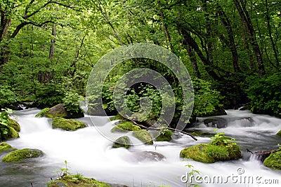 Oirase-gawa River