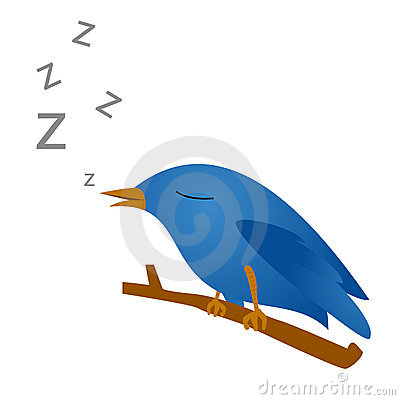 Oiseau de Twitter Photo éditorial