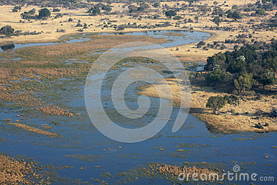 Okavango delta from the sky.
