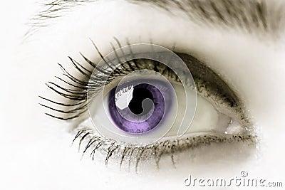 Oko purpurowy