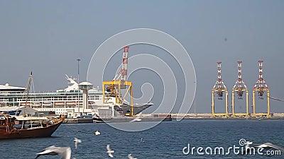 Okręty w porcie Mutrah w Muscat zdjęcie wideo