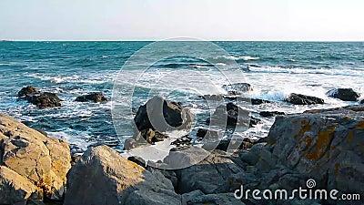 Olas aplastando rocas en la costa almacen de video