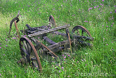 Old abandoned cart among wild flowers