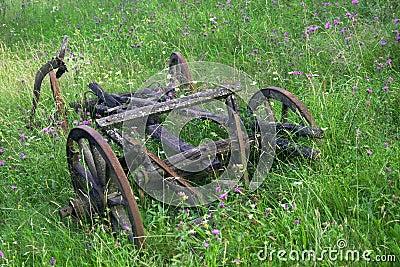 Old abandoned cart among wild flowers