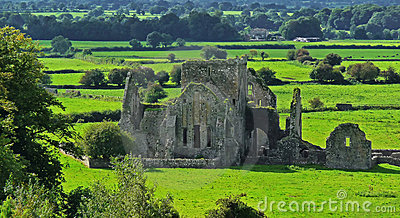 Old Abbey in Cashel