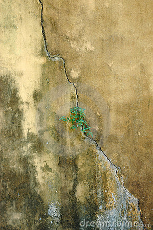 Old abstrct concrete walls background