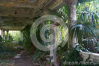 Old antique abandoned overgrown terrace
