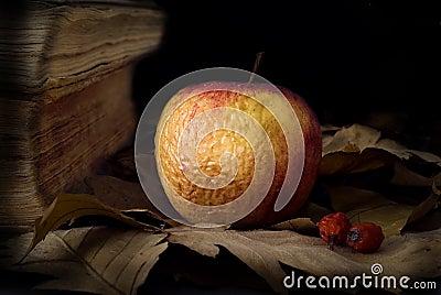 Old apple