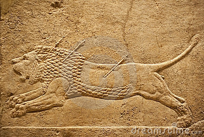 Old assyrian relief of a lion beig hunted