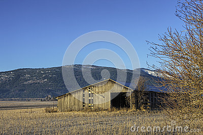 Old barn in field.