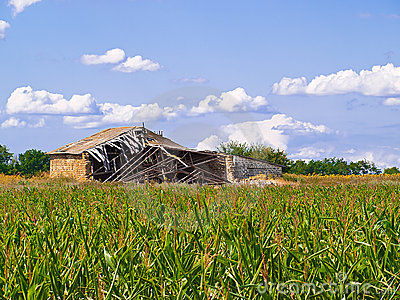 Old barn in the middle