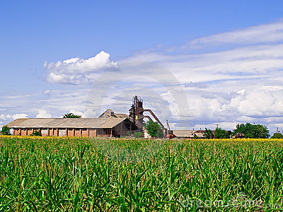 Old barn in the middle of a green field