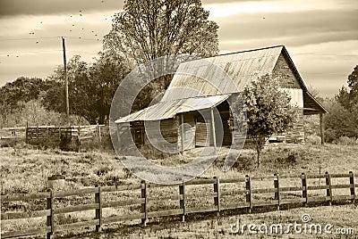 Old Barn/Pasture/Sepia