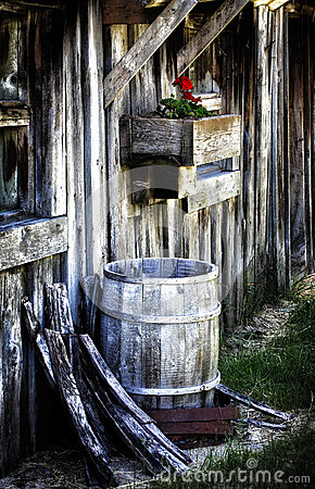 Old Barn with Rain Barrel and Geranium