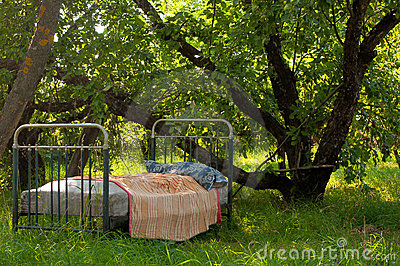 An old bed in the garden
