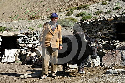 Old bedouin man from Ladakh (India) Editorial Stock Photo