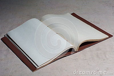 Old blank book disclosed