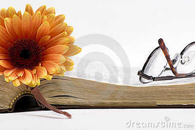 Old book and flower